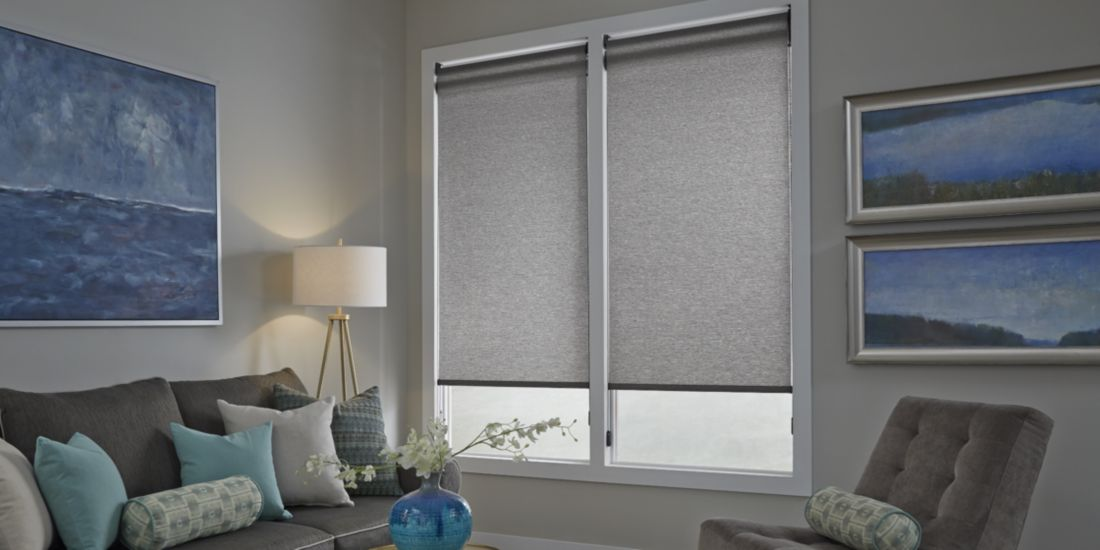 Roller Shades - Living Room